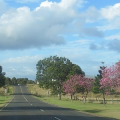 澳大利亚州担保移民动态,昆州491小生意类别即将变政
