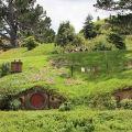 新西兰绿卡怎么拿?移民新西兰有何益处?