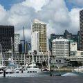 新西兰投资移民怎样选合规的投资项目?