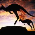 中考过后留学澳洲?起底澳洲中学优势