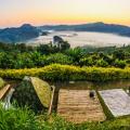 理性分析!泰国房产租赁市场行情如何?