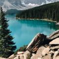 加拿大的永久居民条件:这几个问题一定要搞清楚!