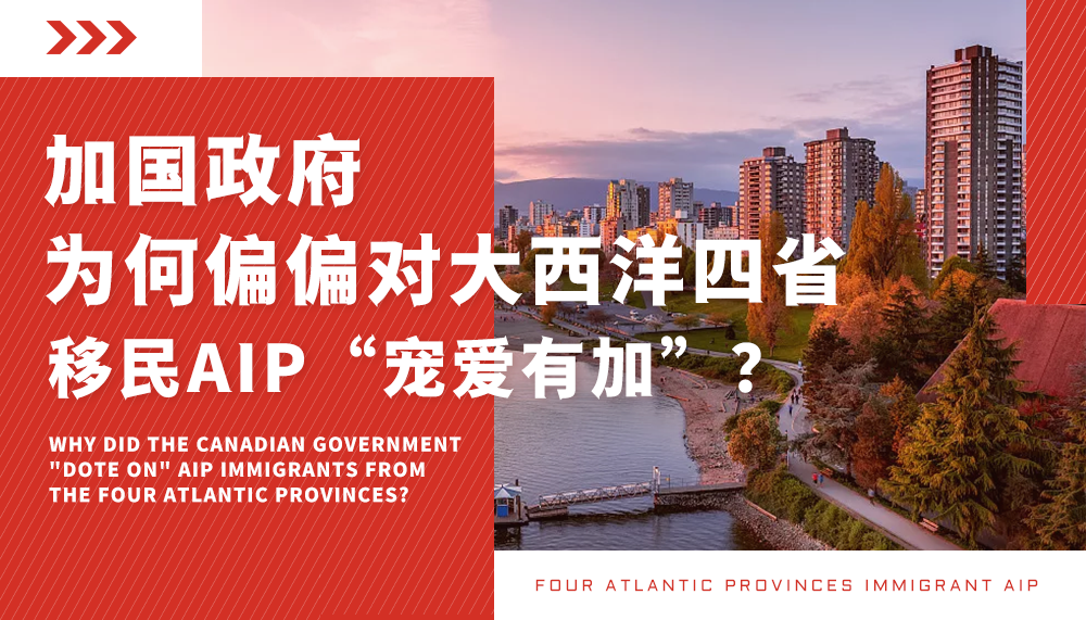 """加国政府为何偏偏对大西洋四省移民AIP""""宠爱有加""""?"""