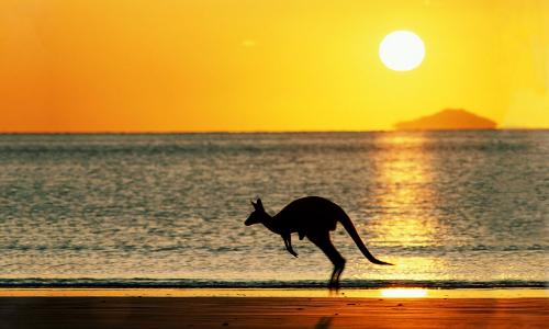 澳大利亞綠卡