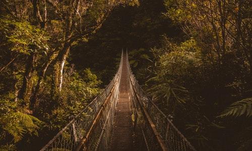 为何都移民新西兰?移民优势有哪些?