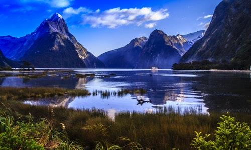 想实现移民不移居,移民新西兰是最佳的选择!