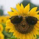 向鈤葵の微笑。